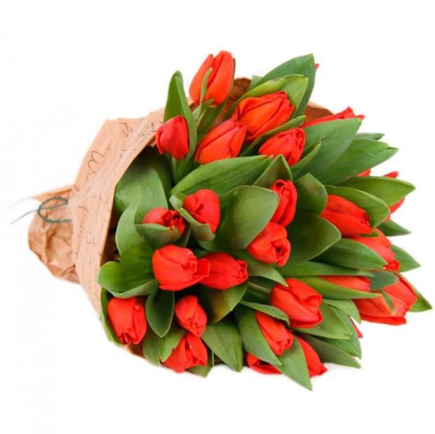 Тюльпаны красные